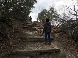 石河ブログ3