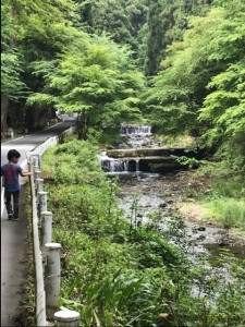 石河ブログ(京都⑧)